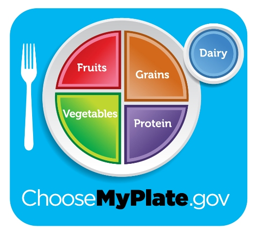 photo of healthy divided plate
